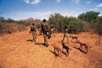 Hadzabe Hunters